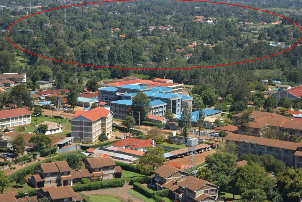Elgon View, Circled in Red